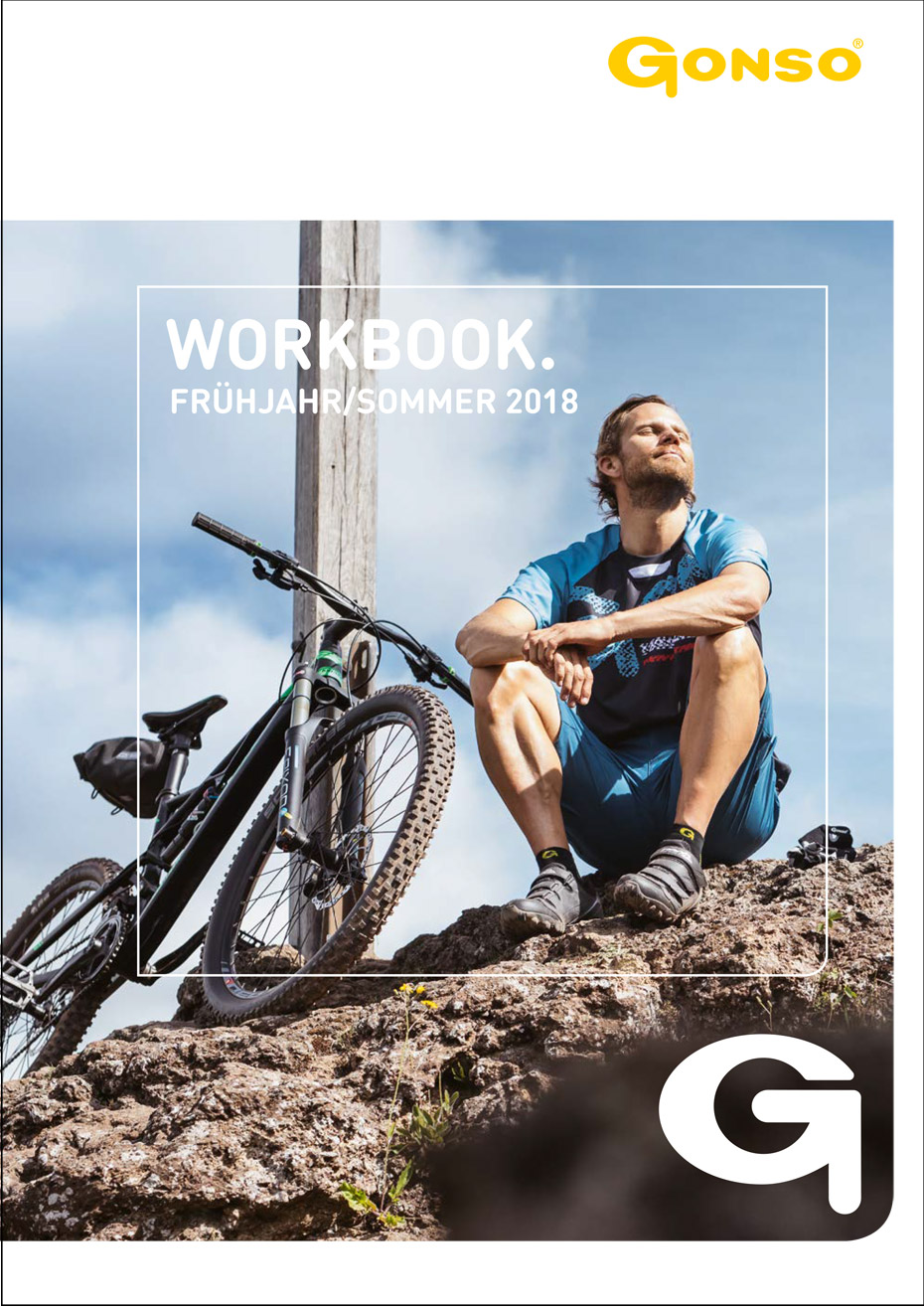 stiphout_GONSO_summer2018_Workbook-01